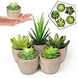 Abree Plantas Suculentas Artificiales 5PCS Jardinera Suculenta Falso Plantas de Cactus Faux Pequeñas con Macetas de Color Gris para la...